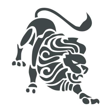 Leonis Holding - Divio Partner